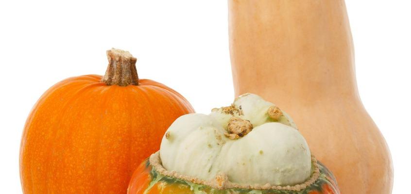 Dynia – niedocenione warzywo czy owoc?