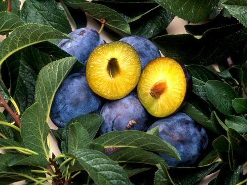 Warzywa i owoce we wrześniu